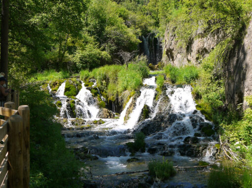 Spearfish Canyon / Roughlock Falls Nature Area